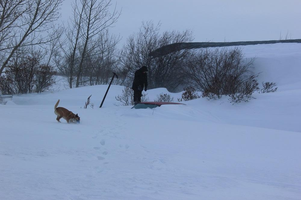 snow walking3.jpg
